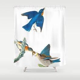 Blue Bird Vintage Illustration Shower Curtain