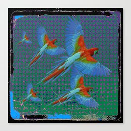 BLACK-TEAL SHABBY CHIC TROPICAL BLUE MACAWS Canvas Print
