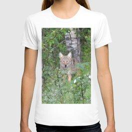 Random nature pics T-shirt