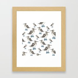 blue foot bobbie pattern Framed Art Print