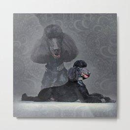 Elegant Black Standard Poodle Composition Metal Print