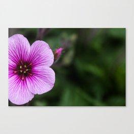 Purple Veins Canvas Print