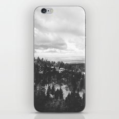 Mountains and Desert view iPhone & iPod Skin