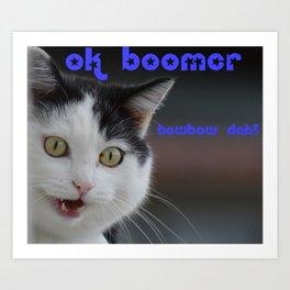 OK Boomer ... Howbow dah! Art Print