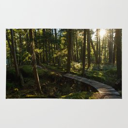 North Shore Trails in the Woods Rug