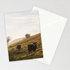 Cattle grazing on mountainside. Derbyshire, UK. Stationery Cards