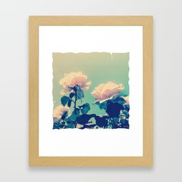 Soft Baby Pink Roses with Mint Blue Sky Backgroud Framed Art Print