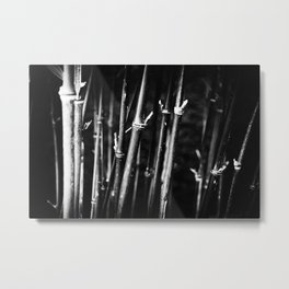 Bamboo Forest Metal Print
