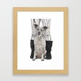 Dingo Dog Framed Art Print