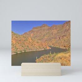 The Salt River along State Route 88 AZ Mini Art Print