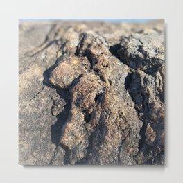 Macro Cliff Scene Metal Print