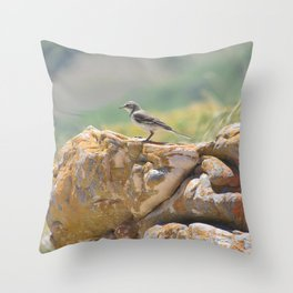 Cape Wagtail Throw Pillow