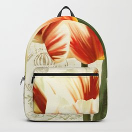 Natural History Sketchbook II Backpack