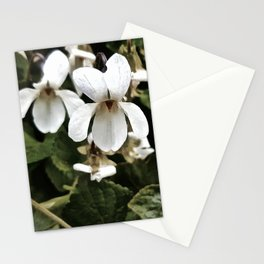 Wild White Violet; Take A Chance On Happiness Stationery Cards
