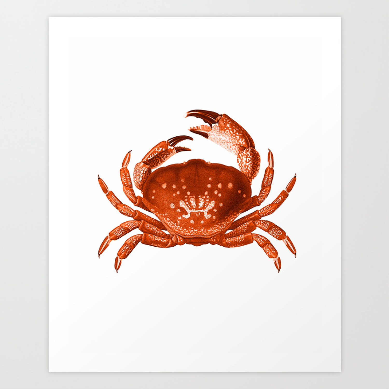 Crab Red Orange Nautical Vintage Style Art Print Beach House Decor Art Print