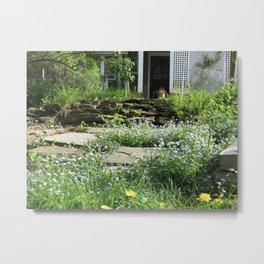 Backyard fairy field Metal Print