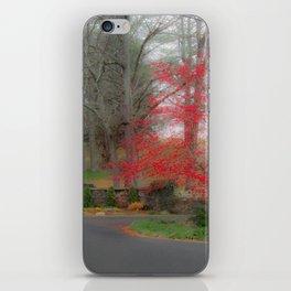 Misty Christmas iPhone Skin