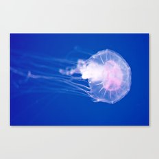 Blue Jellyfish 1 Canvas Print