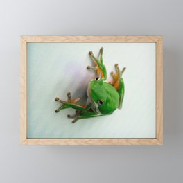 Green Tree Frog Framed Mini Art Print