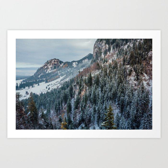 Forest - Bavarian alps Art Print