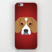 beagle iPhone & iPod Skins featuring Beagle by threeblackdots