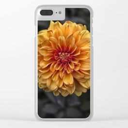 Chrysanthemum Clear iPhone Case