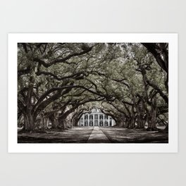 Oak Alley plantation historical site New Orleans USA Black and white Art Print