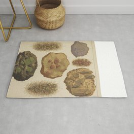 Gems And Minerals Rug