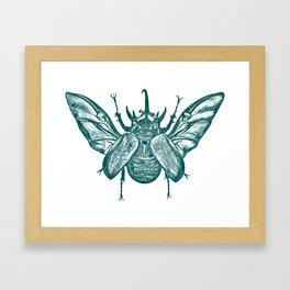 Eupatorus Gracilicornis Framed Art Print