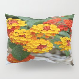 Macro Of Shrub Verbenas or Lantanas (Lantana Camara)  Pillow Sham