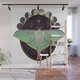 Indian moon Moth Wall Mural