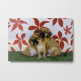 Two Puggle Puppies Snuggling in front of a Background with Hand-painted Red Flowers Metal Print