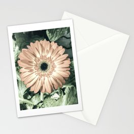 Be Like The Flower... Stationery Cards
