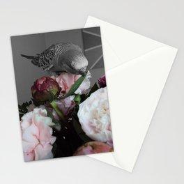 birdie Stationery Cards