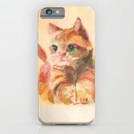 My Lovely Little Kitten iPhone Case
