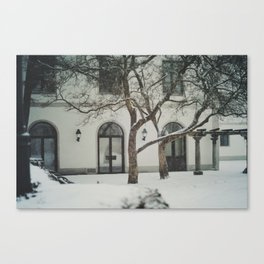 snow in wels (2) Canvas Print