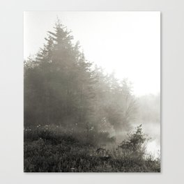 Diamond Bog Canvas Print
