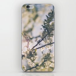 Blooming Blossom, Bring Me Spring! iPhone Skin