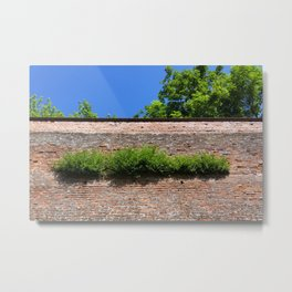 green on the old fortress wall Metal Print
