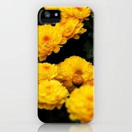 Golden Dew Drops II. iPhone Case