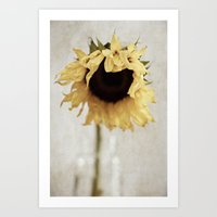 sunflower Art Prints featuring sunflower by Bonnie Jakobsen-Martin