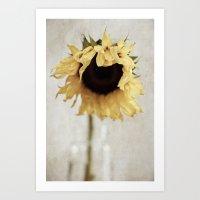 sunflower Art Prints featuring sunflower by Bonnie Jakobsen-Martin