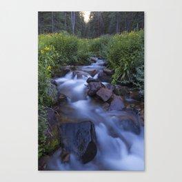 Rocky Mountain h2o Canvas Print