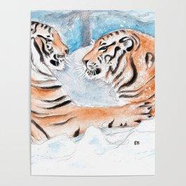 Tiger Play Poster