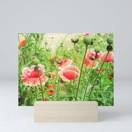 Vintage Poppies Mini Art Print