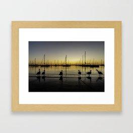 Geese & Sailboats at dawn Framed Art Print