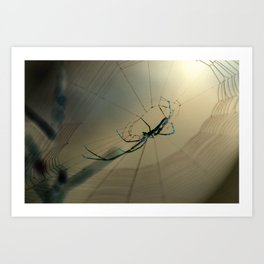 De Spider Art Print