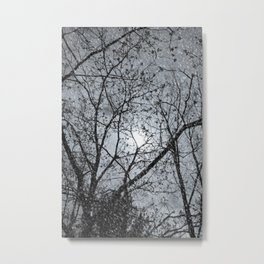 Oh Snowy Night Metal Print