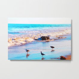 seagull bird on the sandy beach with blue wave water in summer Metal Print