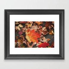 crimson leaves Framed Art Print